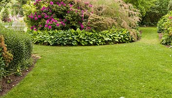 Domestic Landscaping & Gardening Services